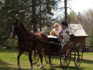Horse carriage at Northridge Inn & Resort.