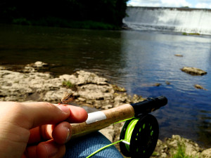 Fishing at Country Inn River Falls.