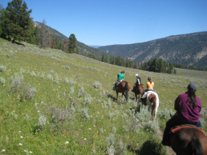 Trail Rides at 320 Guest Ranch