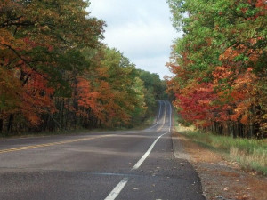 Fall at Fred Thomas Resort
