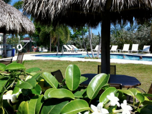 Outdoor pool at Sugar Loaf Lodge.