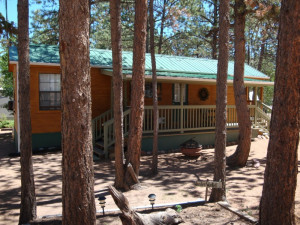 Cabin exterior at Bristlecone Lodge.