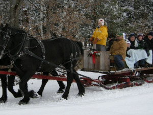 Horse carriage ride at Pine Vista Resort.