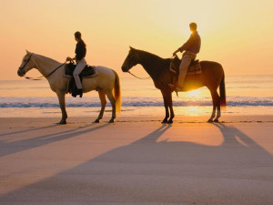 Horseback riding on the beach at Padre Getaways.