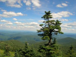 Mountain view at GetAway Vacations.