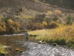 Fishing in the onsite creek