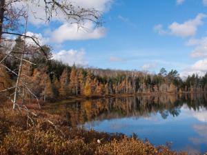 The Lake at Wilson Bay Lodge