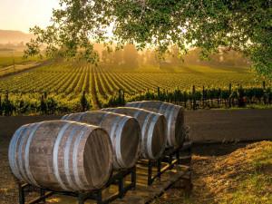 Wineries near Best Western Sonoma Valley Inn & Krug Event Center.