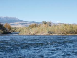 Madison River at Rainbow Valley Lodge