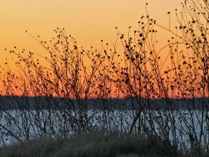 Sunset on the Lake at Tanglewood Resort