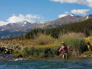 Fly fishing at Breckenridge Discount Lodging.