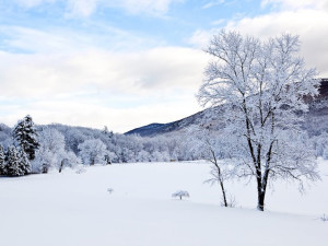 An Awe-Inspiring View of the Shawangunk Mountains (And Our Backyard) During The Winter.