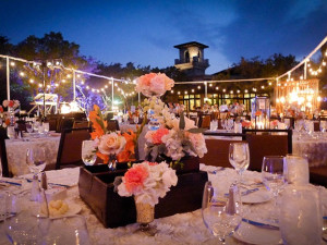 Wedding reception at La Cantera Hill Country Resort.
