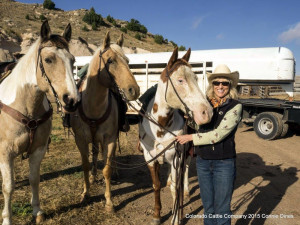 Bring your horse to Colorado Cattle Company Ranch.