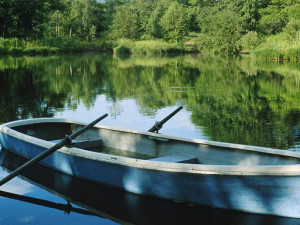 Lake view at Arcadia Coves.
