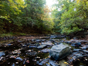 Creek near Highland Rim Retreats.