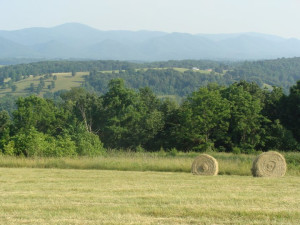 Hay Field at South River Highlands Retreat