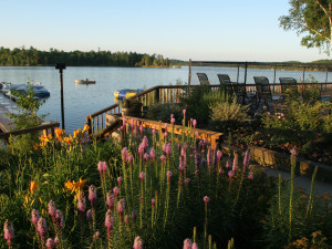 Scenic view at Ruttger's Bay Lake Lodge.