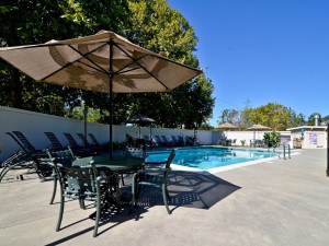 Outdoor pool at Best Western Stevenson Manor Inn.