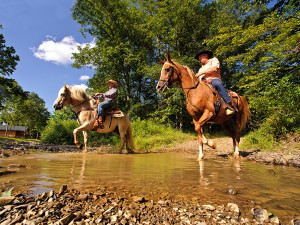 Horseback riding at Creekside Resort.