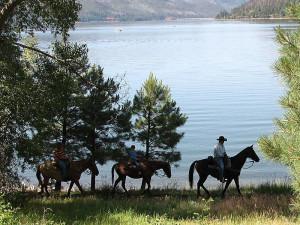 Horseback riding at Lone Wolf Cabins and Getaway.