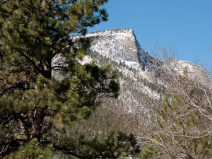 Deer Mountain View at  Wildwood Inn