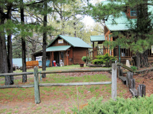Cabins at Cabin Fever Resort.