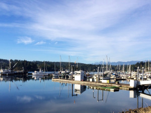 Marina view at The Resort At Port Ludlow.