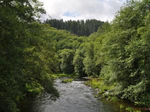 River view at Powder Creek Ranch.