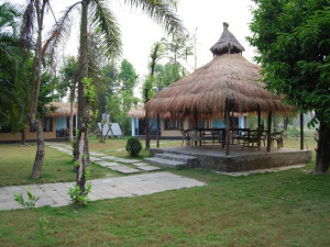 Exterior view of Jungle Lagoon Resort and Safari Lodge.