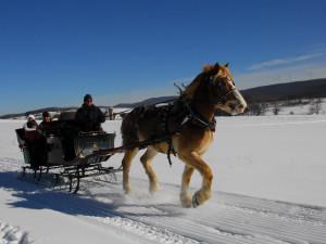 Sleigh rides at Deep Creek Vacations.