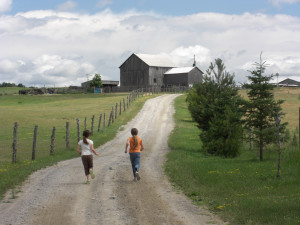 The farm at Elmhirst's Resort.