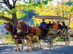Carriage rides at Mohonk Mountain House.