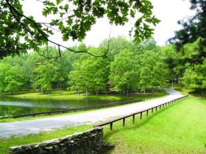 Beautiful view at Caryonah Hunting Lodge.