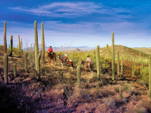Horseback riding at Rancho De Los Caballeros.