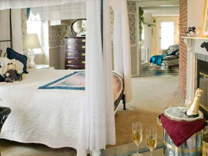 Nest Luxury Room view at Rabbit Hill Inn.