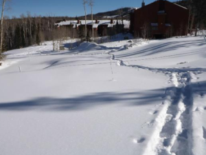 Snowshoe tracks at Copper Chase Condominiums.