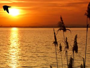 Lake sunset at Tera Miranda Marina Resort.