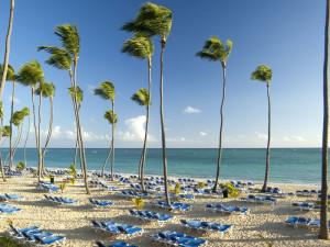 Beach View at Barceló Dominican Beach