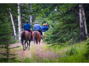 Horseback riding at Steamboat Vacation Rentals.