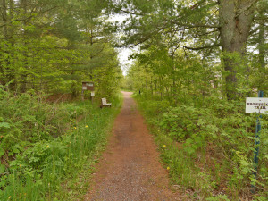 Trail at Bayfield Best House Rentals.
