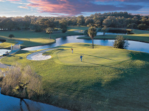 Innisbrook Resort and Golf Club near Teeming Vacation Rentals.