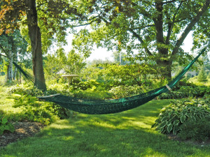 Relax in a hammock at Chanticleer Guest House.