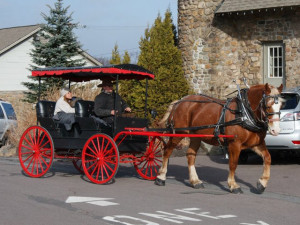 Horse carriage rides at The Inn at Pocono Manor.