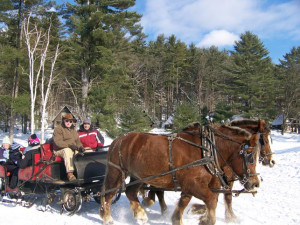 Sleigh ride at Ridin-Hy Ranch Resort.