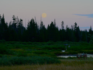 Full Moon over Yellowstone Under Canvas