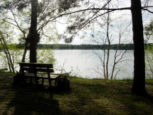Lake view at Black Pine Beach Resort.