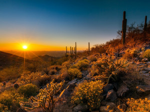 Beautiful scenery at SkyRun Vacation Rentals - Scottsdale, Arizona.