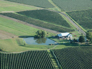 Aerial view of Contented Acres Bed & Breakfast.