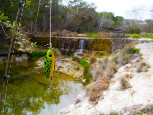 Fishing at Hill Country Premier Lodging.